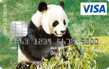 World visa panda